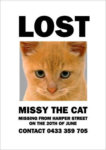 missing-missy-5