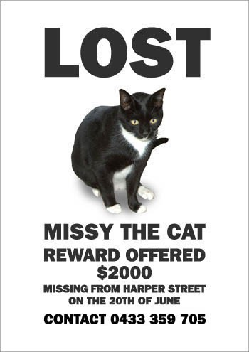 missing-missy-6