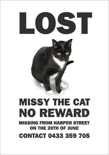 missing-missy-7