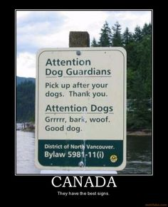 canadian-dogs