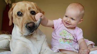 laughing-baby4.jpg