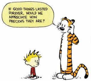 calvin-good-things