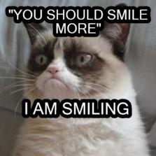 unsmiling-cat