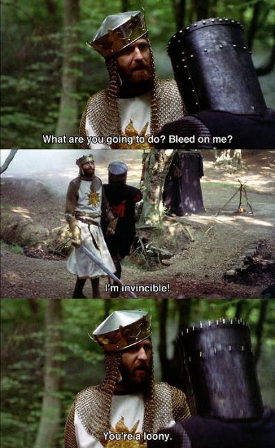 monty-python-youre-a-looney